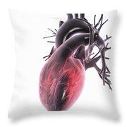 Heart Anatomy Throw Pillow