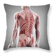 Human Muscles Throw Pillow