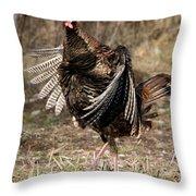 Jake Eastern Wild Turkey Throw Pillow