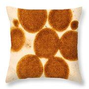 Lipid Droplets Tem Throw Pillow