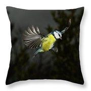 Mesange Bleue Parus Caeruleus Throw Pillow