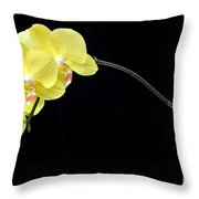 Moon's Orchid  Throw Pillow