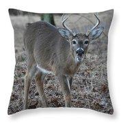 8 Point Buck Throw Pillow