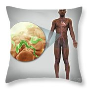 Sleeping Sickness Infection Throw Pillow