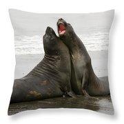 Southern Elephant Seal Throw Pillow