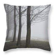 Trees With Fog Throw Pillow