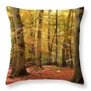 Vibrant Autumn Fall Forest Landscape Image Throw Pillow