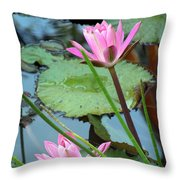 Pink Water Lily Pond Throw Pillow