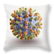 West Nile Virus Throw Pillow