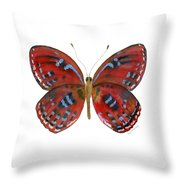 81 Paralaxita Butterfly Throw Pillow by Amy Kirkpatrick