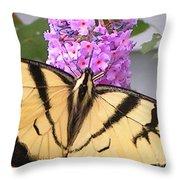 #859 D480 Swallowtail 2010.jpg Throw Pillow