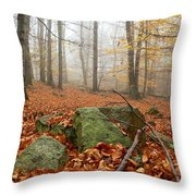 In The Autumn Forest Throw Pillow