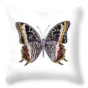 88 Castor Butterfly Throw Pillow by Amy Kirkpatrick