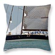 Windquest Throw Pillow