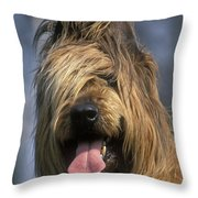 Briard Dog Throw Pillow