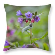Common Lungwort Throw Pillow