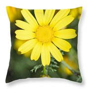 Daisy Throw Pillow by George Atsametakis