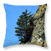 Devil's Slide Hike Throw Pillow