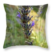 Lavender 6 Throw Pillow