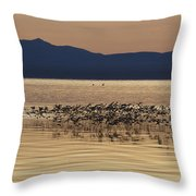 Mono Lake California Throw Pillow by Jason O Watson