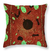 Onion Root Cell Tem Throw Pillow