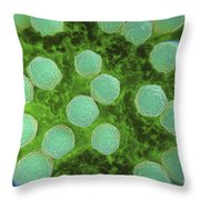 Rubella Virus Throw Pillow