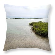Scenes From Key West Throw Pillow