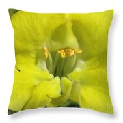 Snapdragon From The Mme Butterfly Mix Throw Pillow
