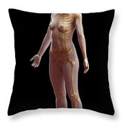 The Skeletal System Female Throw Pillow