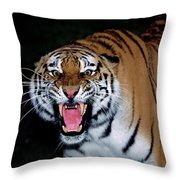 Tigre De Siberie Panthera Tigris Altaica Throw Pillow
