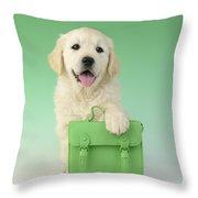 9 To 5 Labrador Throw Pillow by Greg Cuddiford