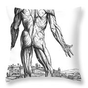 Vesalius: Muscles, 1543 Throw Pillow