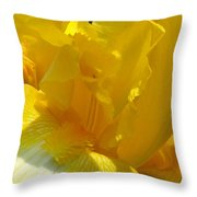 Yellow Iris 2 Throw Pillow