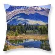 90524-23 In The Bull River Valley Throw Pillow