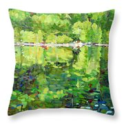 911-sherborne Lake Throw Pillow
