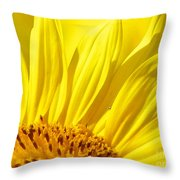 #923 D718 You Are My Sunshine. Sunflower On Colby Farm Throw Pillow