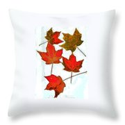 9.3 Throw Pillow