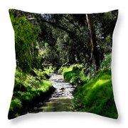 A Babbling Brook Throw Pillow by Al Bourassa