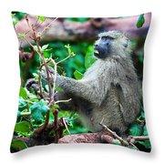 A Baboon In African Bush Throw Pillow
