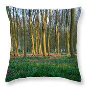 A Badbury Clump Evening Throw Pillow