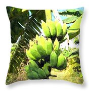 A Banana Field In Late Afternoon Sunlight With Sky And Clouds Throw Pillow