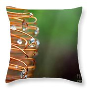 A Banksia Flowers Hold On Water Throw Pillow