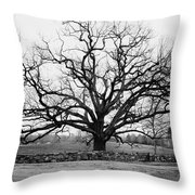 A Bare Oak Tree Throw Pillow