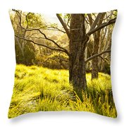 A Bare Tree Throw Pillow