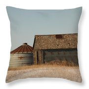A Barn And A Bin Throw Pillow