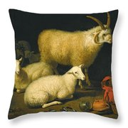 A Barn Interior With A Four-horned Ram And Four Ewes And A Goat Throw Pillow