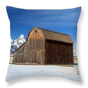 A Barn With A View Throw Pillow