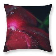A Beacon Of Light Throw Pillow by Laurie Search