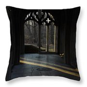 A Beam Of Light Throw Pillow