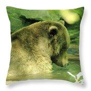 A Bear Bath Throw Pillow